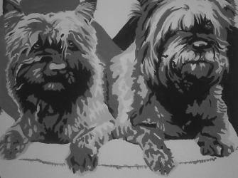 Rik-Muurschilderingen-Pop-Art-Cairn-Terrier1